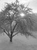 Winterzeit in Waltersholz